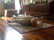 Hài hước: Ông nội Van Persie bắt chước cháu làm 'Người Hà Lan bay'