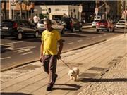 Curitiba: Một lăng kính mới về xứ sở Samba đầy nắng và gió