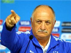 Scolari quyết không từ chức : 'Tôi sẽ làm tốt hơn ở World Cup 2018'