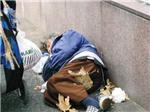 """Hàng triệu người nghèo ở chốn """"thiên đường"""""""