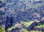Cao nguyên đá Đồng Văn trở thành công viên địa chất thế giới