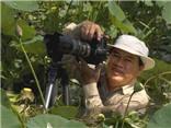 Tôi tin hơn 90% người Việt chọn sen làm quốc hoa