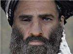 Taliban bác tin thủ lĩnh Omar đã chết