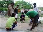 Trẻ nghèo Ấn Độ mơ đổi đời bằng golf