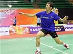 Giải cầu lông Nhật Bản mở rộng 2012: Tiến Minh vào cuộc