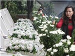 Ngã ba Đồng Lộc - 'Ngàn thông xanh tóc em 17...' (*)