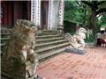 'Bệnh dịch' sư tử đá ngoại lai: Phòng chống từ đâu?