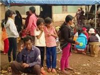 Ngộ độc thực phẩm, 114 người nhập viện