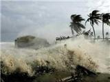 Hướng di chuyển của bão Fung - Wong trong 24 giờ tới