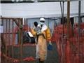 Nạn nhân thoát dịch Ebola: Khốn khổ vì kỳ thị