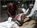 Đánh bom liều chết ở Nigeria, ít nhất 120 người thiệt mạng