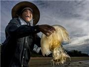Ngắm nhìn di sản Việt Nam 'sống' qua ống kính nhiếp ảnh gia