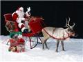 ĐỒ HỌA: Những sự thật thú vị về lễ Giáng sinh