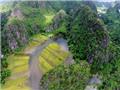 10 điểm nhấn văn hóa Việt Nam năm 2014 do báo Thể thao & Văn hóa chọn