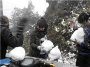 CHÙM ẢNH: Tuyết rơi phủ trắng Sa Pa