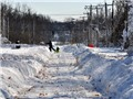 Đông Bắc nước Mỹ hứng chịu trận bão tuyết lớn trong lịch sử