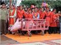 Animals Asia phản đối 'lễ hội tàn bạo nhất Việt Nam': 'Lệch chuẩn' thì khó để hiểu nhau!