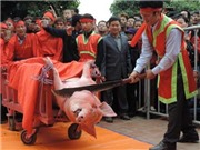 Tranh cãi quanh lễ hội chém lợn