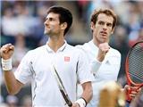 """Chung kết đơn nam Australian Open 2015: """"Võ"""" nào của Murray để đấu Djokovic?"""