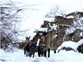 Ít nhất 124 người đã thiệt mạng trong vụ lở tuyết tại Afghanistan