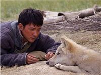 Phim 'Totem Sói' của Trung Quốc bị chỉ trích 'kích động và gây hấn'