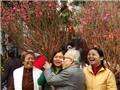 Chuyện Hà Nội: Mùa Xuân Hà Nội sau một vòng 'hoa giáp'