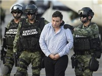 Mexico: Hàng loạt trùm ma túy lần lượt sa lưới