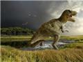 Phát hiện 43 quả trứng khủng long hóa thạch