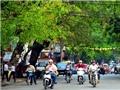 Bắc Bộ dịu mát, Nam Bộ duy trì nắng mạnh