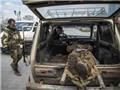 """Đội quân """"Tulip Đen"""" làm rung động đất nước Ukraine"""