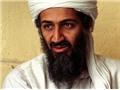 Những bí mật của Bin Laden