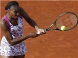 Venus Williams bỏ họp báo, gia nhập CLB 'gái hư' làng tennis