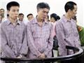22 năm tù cho 3 kẻ thả rắn độc vào Khu đô thị Vinhome Riverside tại Hà Nội