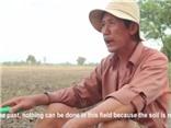 Câu chuyện cải tạo đất của người nông dân có gương mặt 'cine'