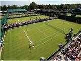 Wimbledon 2015 dành 45 phút để mặc niệm các nạn nhân của vụ khủng bố ở Tunisia