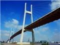 Vụ loan tin thất thiệt 'nứt cầu Phú Mỹ': 'Đề nghị cơ quan chức năng vào cuộc xử lý'