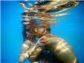 Đẹp ngất ngây, cặp đôi hôn nhau đắm say dưới nước