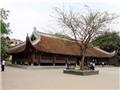 Đình làng Việt 'kêu cứu'