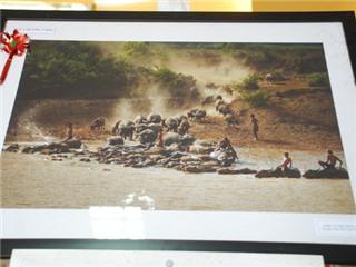 Ngắm những tác phẩm xuất sắc nhất triển lãm ảnh nghệ thuật Nam Trung Bộ và Tây Nguyên