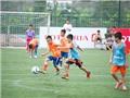 64 đội bóng dự giải Bóng đá nhi đồng toàn quốc 2015