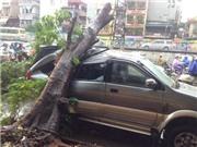 Hà Nội: Mưa lớn, cây đổ, đường tắc, nhiều phố ngập sâu đến nửa mét