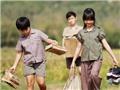 Văn hóa 'nóng' trong tuần: Hội chứng 'Tôi thấy hoa vàng trên cỏ xanh' thống trị