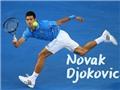 Ai sẽ là người cản bước Novak Djokovic thời điểm hiện tại?