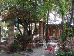 Trải nghiệm những quán cà phê lý tưởng ở Sài Gòn