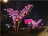 Đề xuất tổ chức thi chọn thiết kế đẹp để trang trí chiếu sáng đường phố Hà Nội