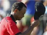Golf: Ơn Giời, Tiger Woods có thể trở lại