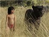 Siêu phẩm 'The Jungle Book' bị tố phân biệt chủng tộc