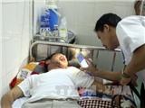Kết luận chính thức về trường hợp ăn cá nục bị nhập viện ở Nghệ An