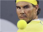 Tennis ngày 5/4: Nadal, Murray, Del Potro khởi đầu thắng lợi. Toni Nadal không muốn chạm trán Djokovic