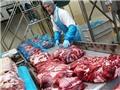 Tin vui cho những người mê thực phẩm Nga: Mỗi tháng sẽ có 500 - 1000 tấn thịt vào Việt Nam